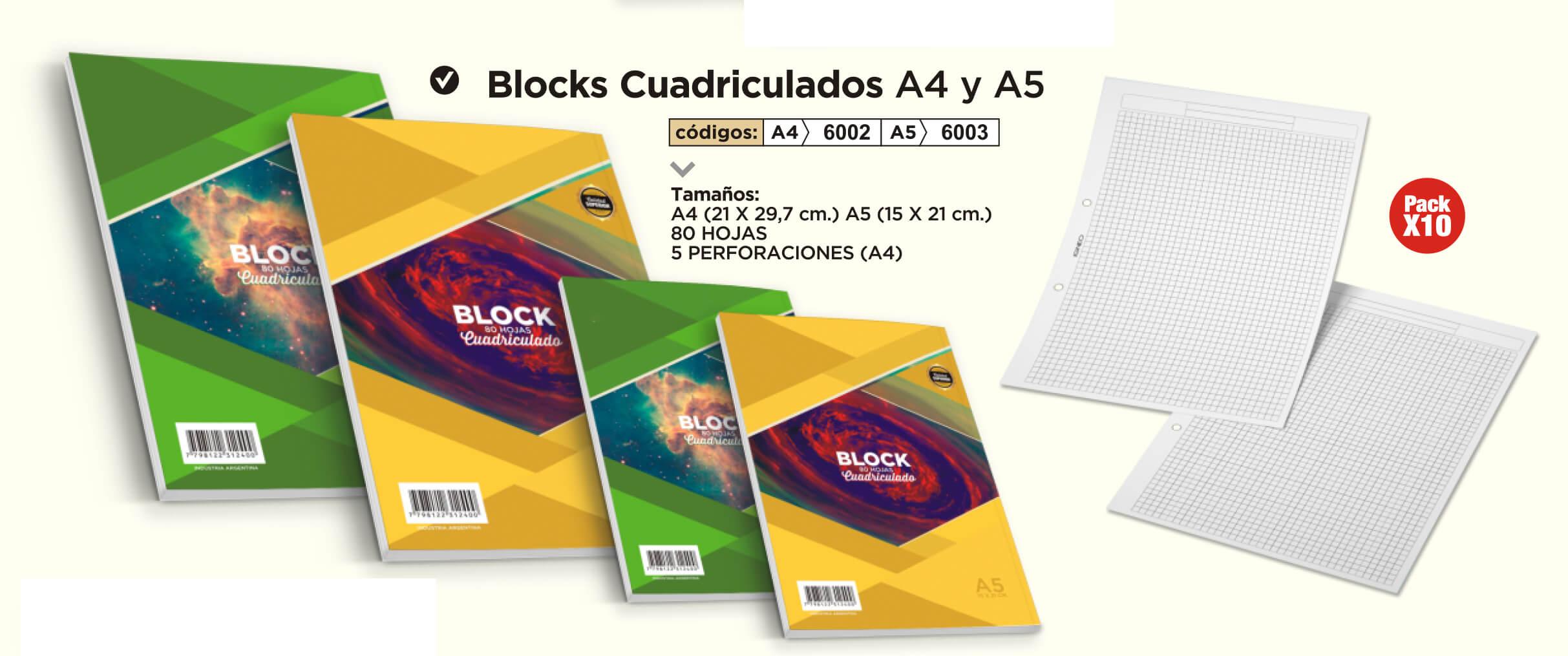 Cuadernos Cuadriculados A4 y A5